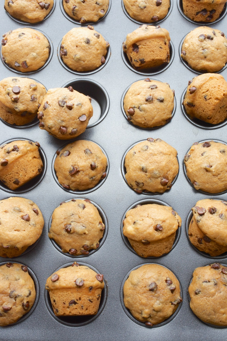 Ready in 20 minutes, these vegan Chocolate Chip Mini Muffins will be a new go-to, pop-able treat! Bursting with chocolate chip cookie flavor, these soft mini muffins are sure to be a hit! They're great for lunch boxes or as a fun, after school snack. (vegan, dairy-free, egg-free)
