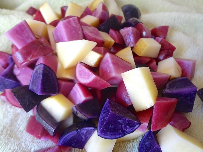 Diced purple and yellow fingerling potatoes being dried on a towel for potato tacos.