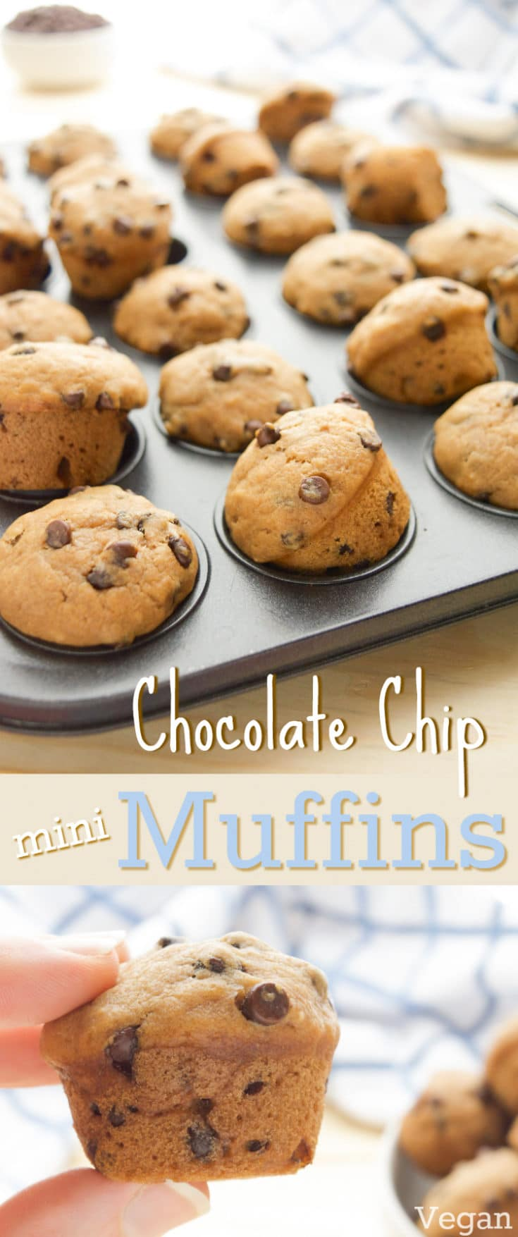 Ready in 20 minutes, these mini Vegan Chocolate Chip Muffins will be a new go-to, pop-able treat!  Bursting with chocolate chip cookie flavor, these soft mini muffins are sure to be a hit! They're great for lunch boxes or as a fun after school snack.  #veganmuffins #chocolatemuffins #veganrecipes #kidfriendlyrecipe #vegansnack