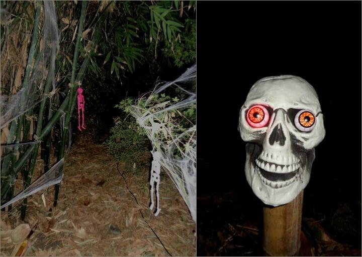 halloween-skull-collage
