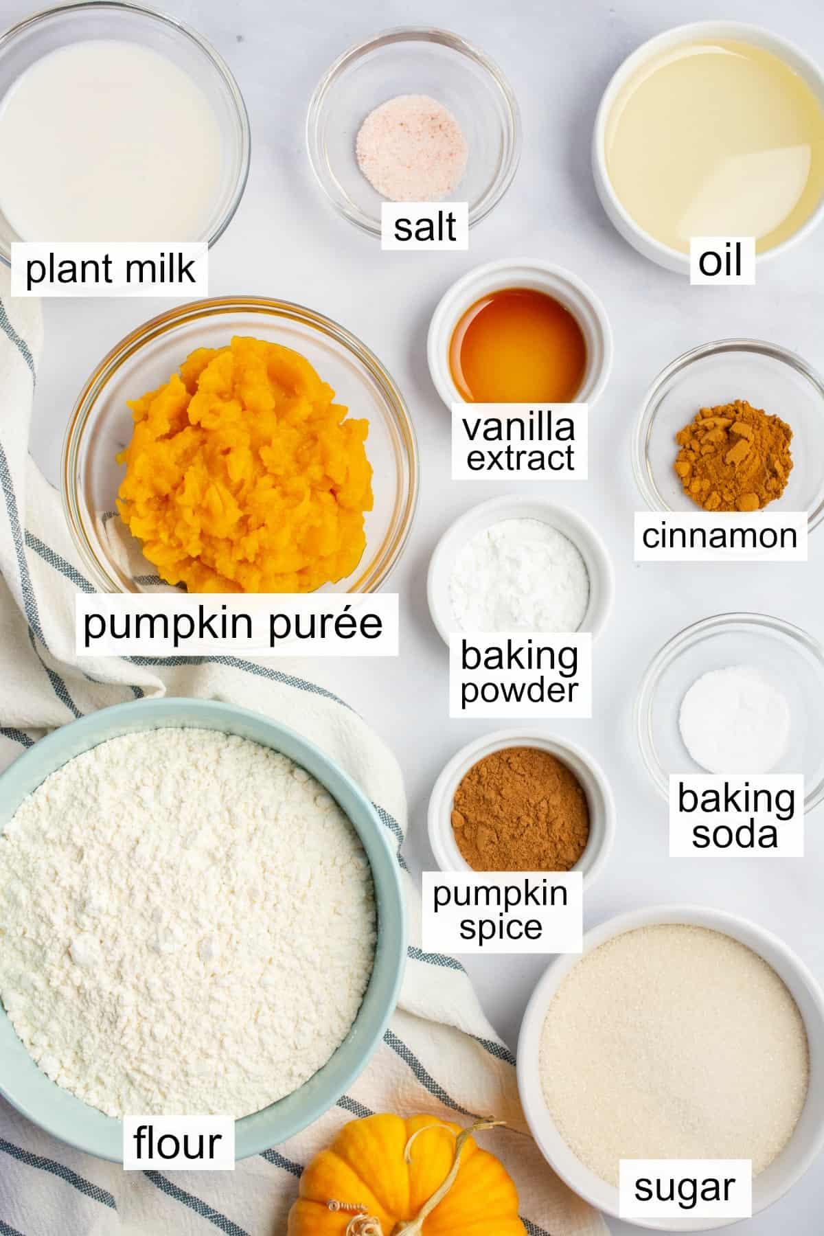 Labeled ingredients to make vegan pumpkin cake.